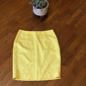 NWOT Pincel Skirt